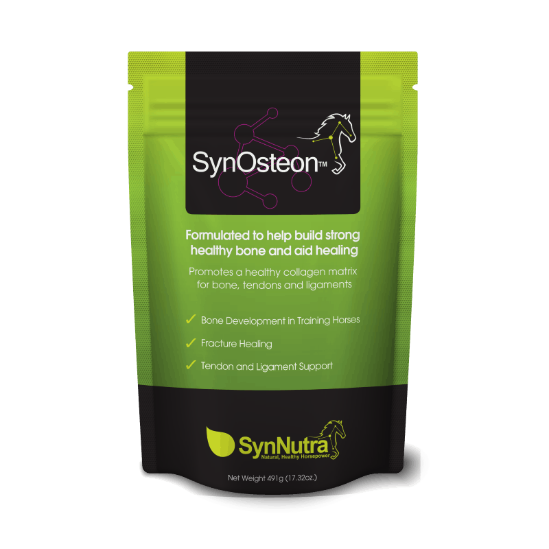 SynOsteon™ Healthy Bone For Racehorses