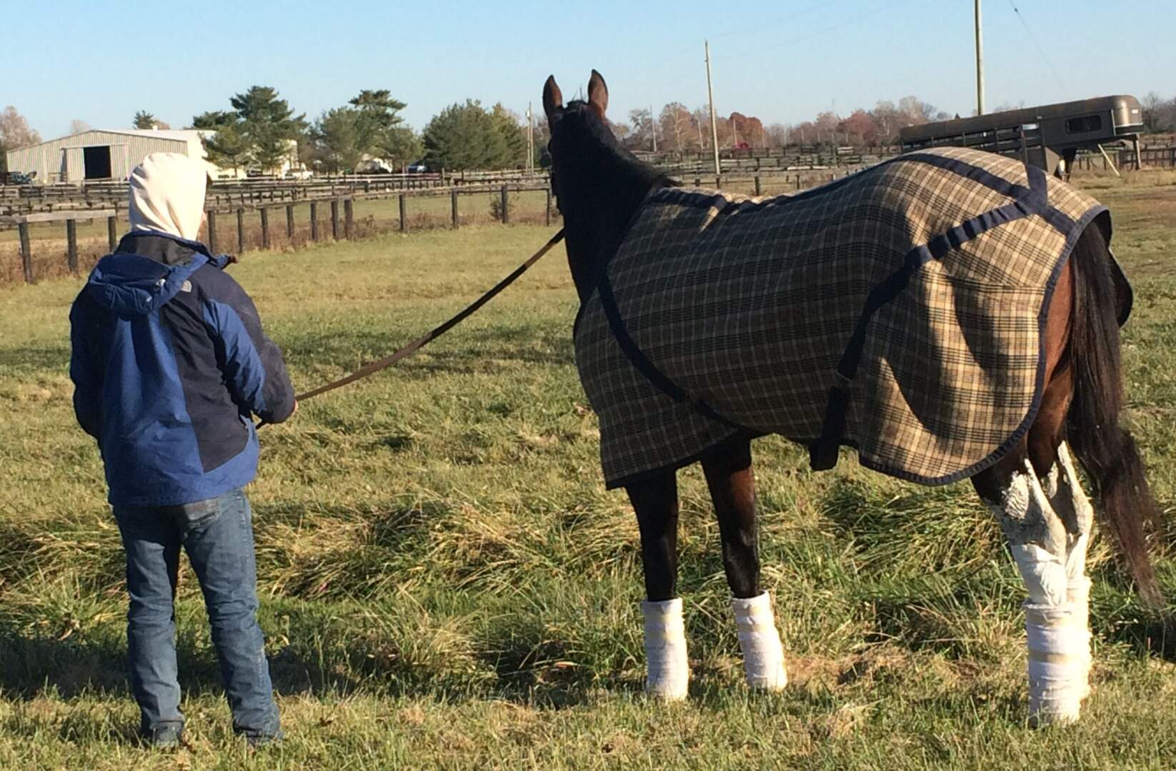 Dirty Jobs: Racetrack Groom