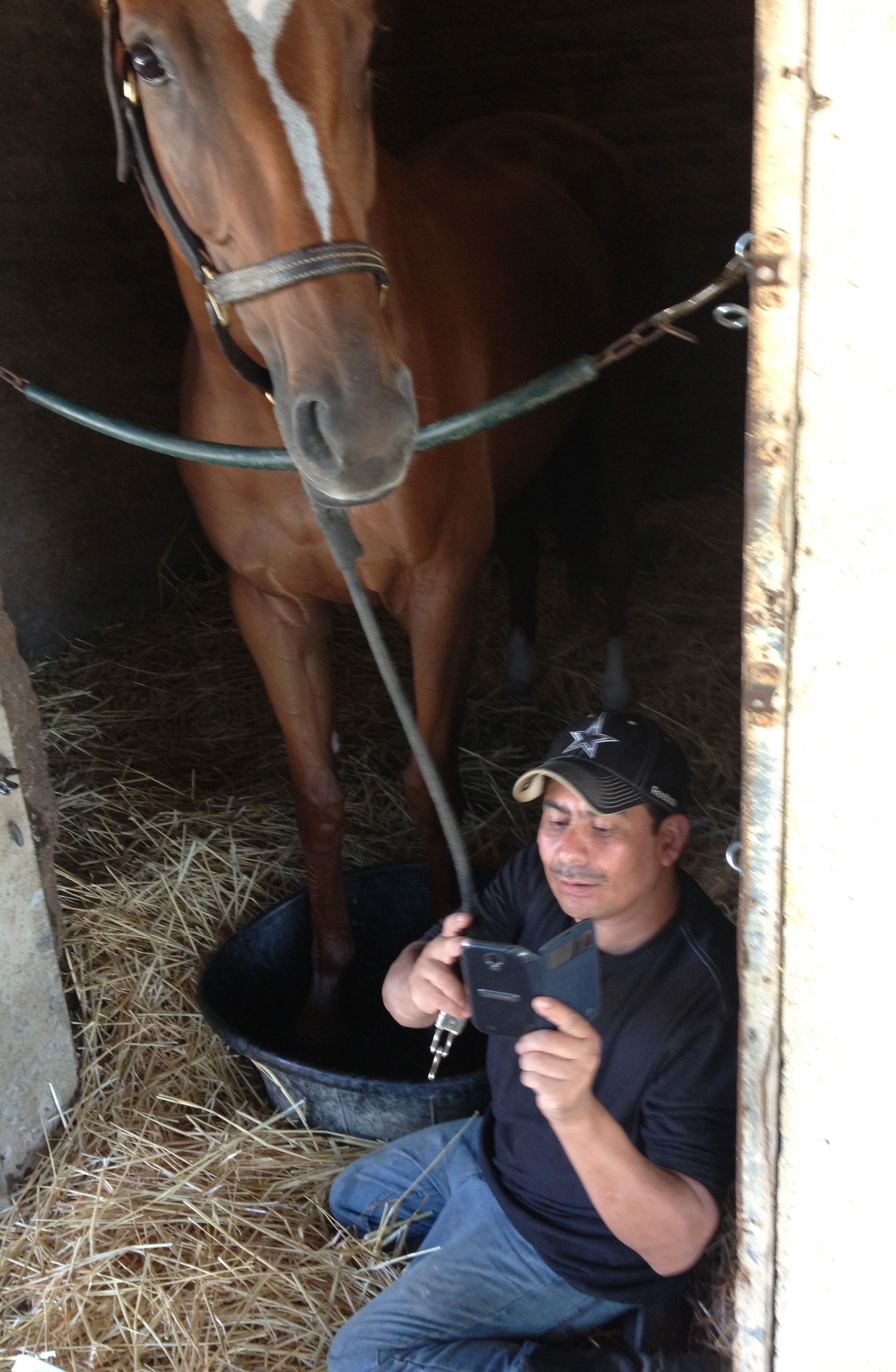 A nice foot soak for the the horse and a texting break for the groom.
